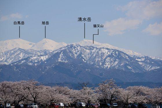 後立山連峰:清水岳 - いこまい...